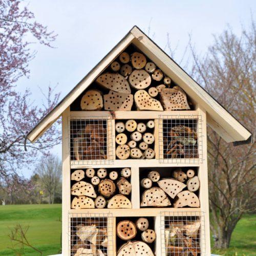 GCGN-Bild - 21-04-09 - Insektenhotel - gestiftet von Siegfried Schneider - bearbeitet