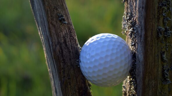 the-golf-ball-5199529_1920